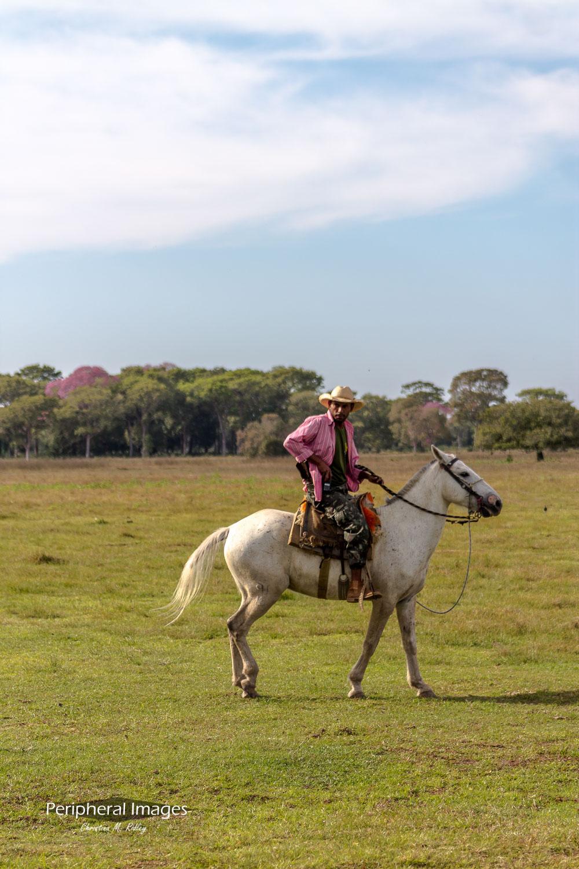 Modern Gaucho- Pantanal Brazil