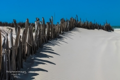 White Sand Beach- Lencois Maranhenses Brazil